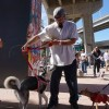 Program Offers Barrio Logan Pet Owners Free Services